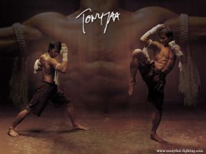 Muay-Thai-Wallpapers-Tony-Jaa-1